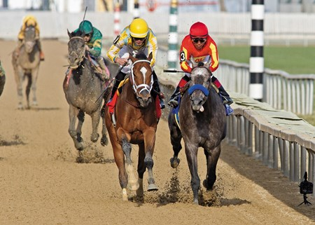 Dynamic Impact continued trainer Mark Casse's big spring, edging 2-5 favorite Midnight Hawk by the narrowest of noses in the $500,000 Grade III Illinois Derby at Hawthorne Race Course.