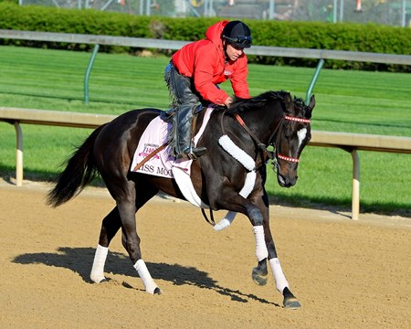Caption: Kiss Moon with Otto Thorwarth