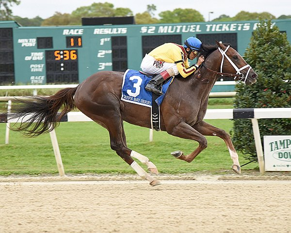 Carpe Diem made his 2015 debut in style, taking the $350,000 Grade II Tampa Bay Derby at Tampa Bay Downs by five lengths to claim his third victory from four starts.
