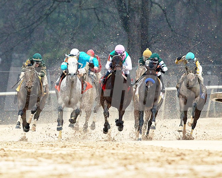 Final turn of the Grade II Azeri Stakes at Oaklawn Park in Hot Springs, Arkansas.