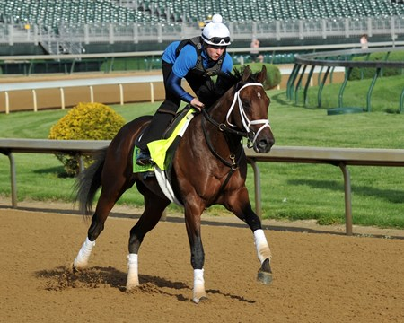 Palace Malice, Kentucky Derby 2013