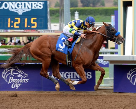 Tanma Corp.'s speedy Chitu won nearly gate to wire in the $100,000 Damascus Stakes that came up deep in talent at Santa Anita Park. The field included six graded stakes winners.