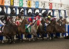Woodbine Releases Full Stakes Schedule