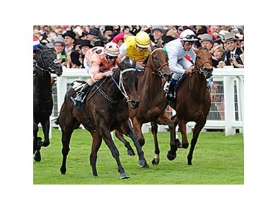 Racing at Royal Ascot in England.