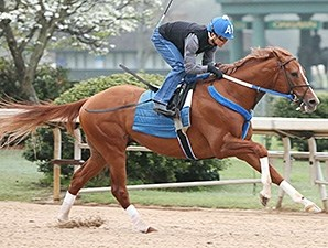 Tapiture works at Oaklawn Park April 6.