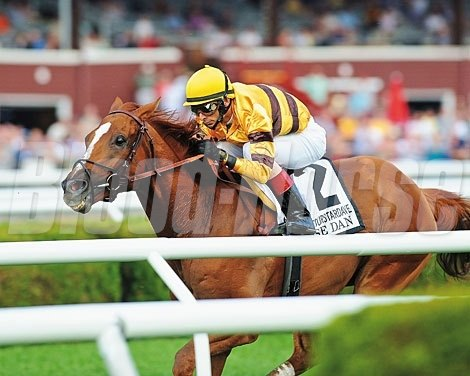 Wise Dan journeyed to Saratoga next, to run in the Fourstardave Handicap (gr. IIT).