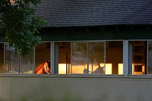 Horses walk in a barn at Belmont Park