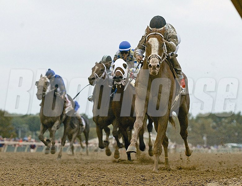 Will Take Charge #7 (R) with Luis Saez riding won the $1,000,000 Grade 2 Pennsylvania Derby at Parx Racing in Bensalem, Pennsylvania on Saturday June 21, 2013.