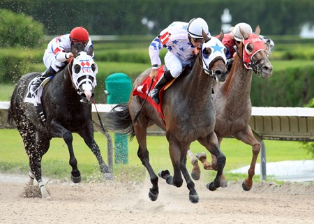 Black Diamond and Luca Panici ride to victory in the 2013 Ponche Handicap at Calder Race Course in Miami Gardens, Florida.