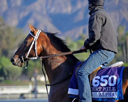 Caption:  Alpha