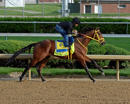 Caption: Wildcat Red starting his work.