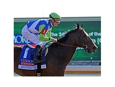 "Divining Rod<br><a target=""blank"" href=""http://photos.bloodhorse.com/AtTheRaces-1/At-the-Races-2015/i-7rSMsGb"">Order This Photo</a>"