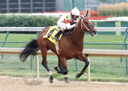 Cinco Charlie goes gate-to-wire in Grade III Bashford Manor Stakes at Churchill Downs.