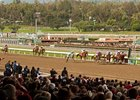 Santa Anita, first race on dirt 2010.