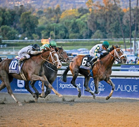 Mucho Macho Man, inside rail, wins the Breeders' Cup Classic (gr. I).