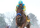 American Pharoah leaves the competition behind in the Rebel Stakes.