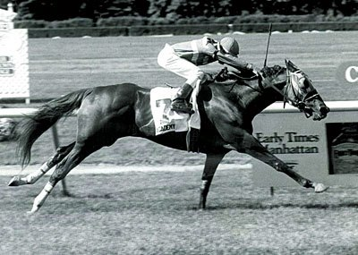 Academy Award - Son of Secretariat won the 1991 Early Times Manhattan (gr. IIT). Sired 10 stakes winners.