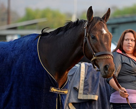 Caption:  Ria Antonia
