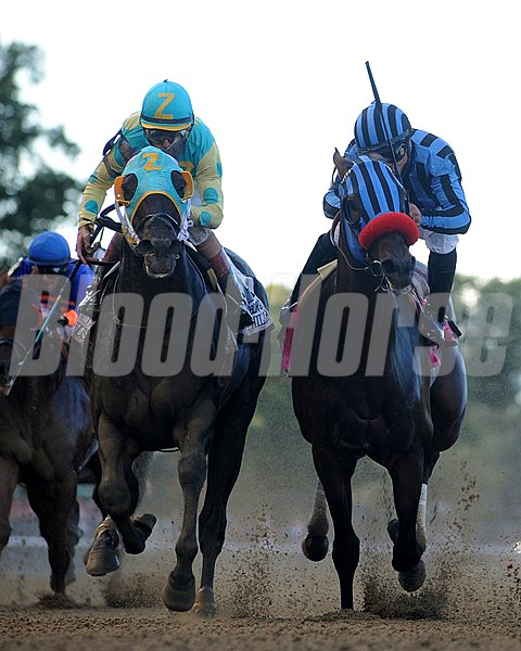 Private Zone, right, and Justin Phillip, left, racing in the Vosburgh Stakes. 9/28/2013