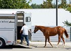 Another Keeneland September Yearling Sale has reached its end.