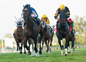 Favored at 6-5 for his first start since Nov. 29, Waterford Stable's Summer Front ran down pacesetter Tetradrachm in the final sixteenth to win the $200,000 Grade II Fort Lauderdale Stakes at Gulfstream Park.