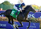Wrote winning the 2011 Breeders' Cup Juvenile Turf