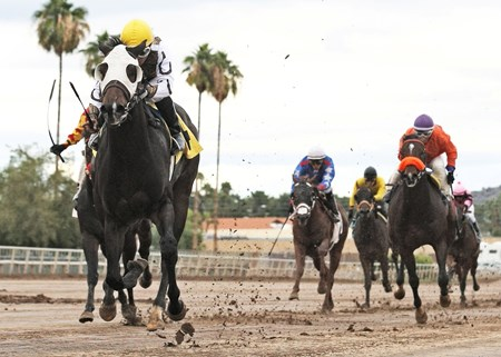 Rockin Home jams out to a solid victory in the Arizona Breeders' Futurity Colts & Geldings at Turf Paradise.