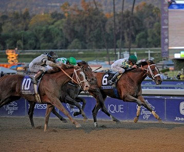 Mucho Macho Man, inside rail, wins the Breeders' Cup Classic, (gr. I), over Will Take Charge with Declaration of War (center) in third.