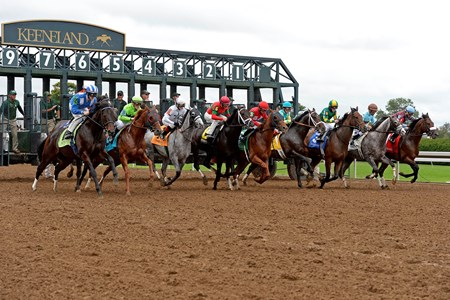 Start of the first race on opening day of Keeneland's fall meet. This was also the first race on the new dirt track that replaced the polytrack.