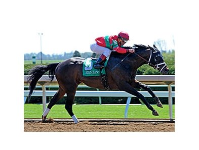 Protonico winning the Ben Ali Stakes.