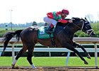 Protonico Bounces Back with Ben Ali Score