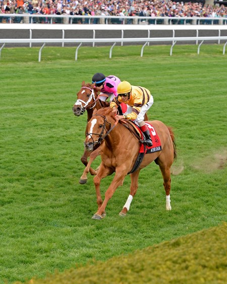 Wise Dan took his first step toward a possible third straight Horse of the Year title with a measured victory in the $300,000 Grade I Maker's 46 Mile on the Keeneland turf.