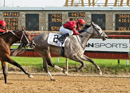 Flashy American and jockey Christopher A. Emigh wins the Grade III Sixty Sails Handicap at Hawthorne Race Course.