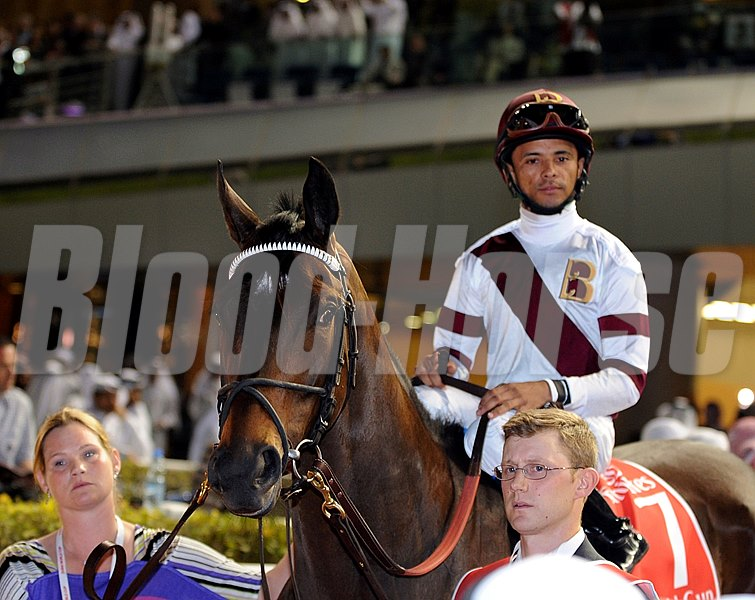 Royal Delta entering the track for the 2012 Dubai World Cup.