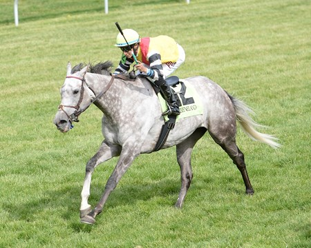 Inimitable Romanee, given a patient ride by Alan Garcia, got up at the wire on the far outside to nip Aigue Marine for a 14-1 surprise in the $150,000 Grade III Bewitch Stakes on the Keeneland turf.