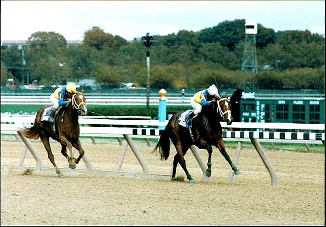 Twilight Ridge and Family Style running at the 1985 Breeders' Cup.