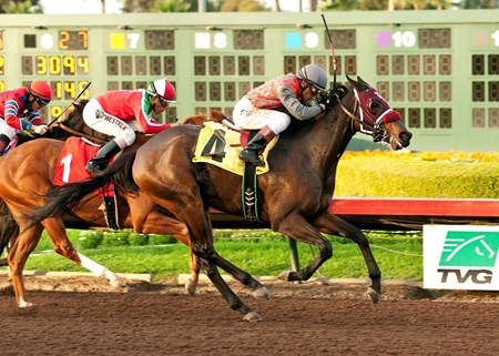 Odds-on choice My Fiona registered the third stakes win of her juvenile campaign when she outfought a game Heat the Rocks in a see-saw stretch run to prevail in the $200,000 Soviet Problem Stakes by half a length Dec. 7, 2014 at Los Alamitos.