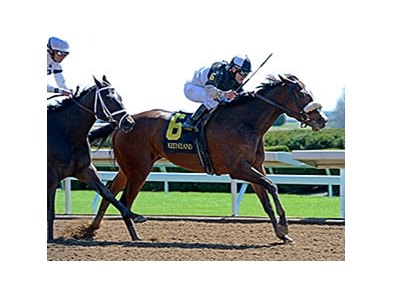 "Princess Violet won the Madison Stakes (gr. I) at Keeneland April 4.<br><a target=""blank"" href=""http://photos.bloodhorse.com/AtTheRaces-1/At-the-Races-2015/i-47KkdBM"">Order This Photo</a>"
