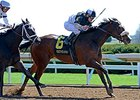 "Princess Violet holds off Stopchargingmaria to win the Madison Stakes.<br><a target=""blank"" href=""http://photos.bloodhorse.com/AtTheRaces-1/At-the-Races-2015/i-47KkdBM"">Order This Photo</a>"
