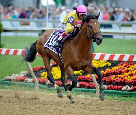 Sage Valley and jockey John Velazquez wins the Maryland Sprint Handicap at Pimlico on May 18, 2013.