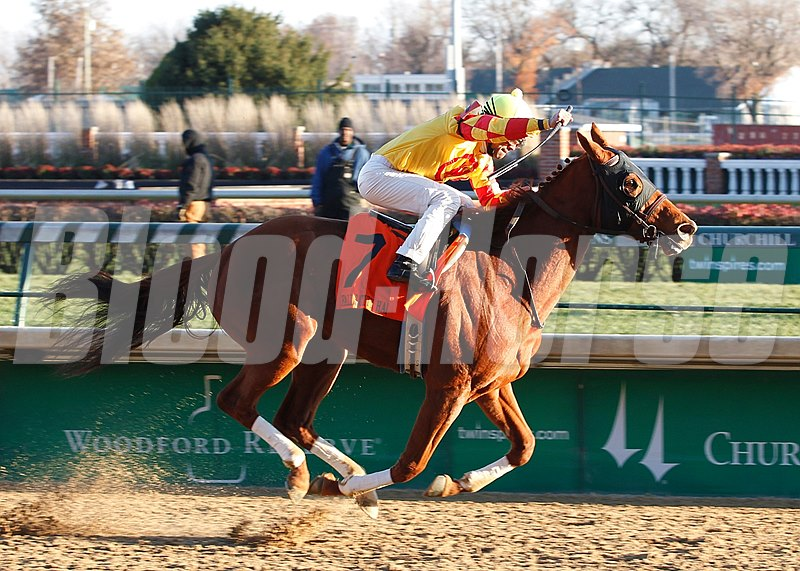 Wine Princess and jockey Shaun Bridgmohan are victorious in the 2013 Grade II Falls City Handicap at Churchill Downs.