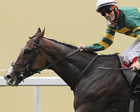 Fran Barry sticks his tongue out at the camera as he guides Well Sharp to win the Ascot Stakes.