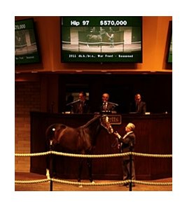Hip 97 sold for $570,000.