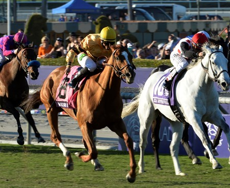 Wise Dan, with jockey Jose Lezcano, passes the competition to win the Breeders' Cup Mile for the second time in two years at Santa Anita Park in Arcadia, CA November 2, 2013.