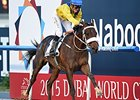 Mubtaahij winning the UAE Derby.