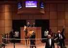 Pool Land sold for $900,000 at the Fasig-Tipton Kentucky winter mixed sale.
