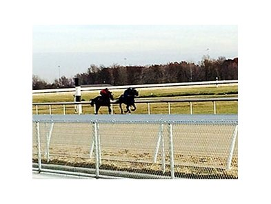 Horses on the new surface at Mahoning Valley Nov. 10.