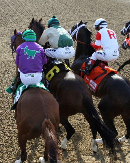 California Chrome, Samraat, and We Miss Artie leave the starting gate.