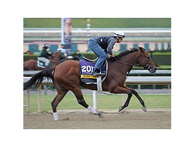 Beholder works at Santa Anita.