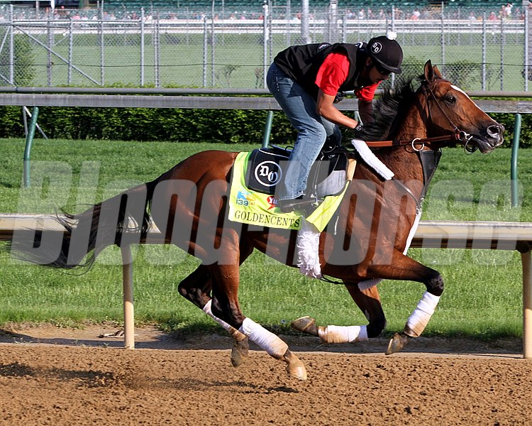 Goldencents on the track at Churchill Downs on May 1, 2013.